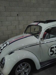 THE LOVE BUG!